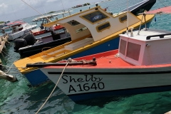 Arub: Fishing Boats at Savaneta