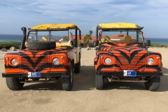 Aruba: Land Rovers