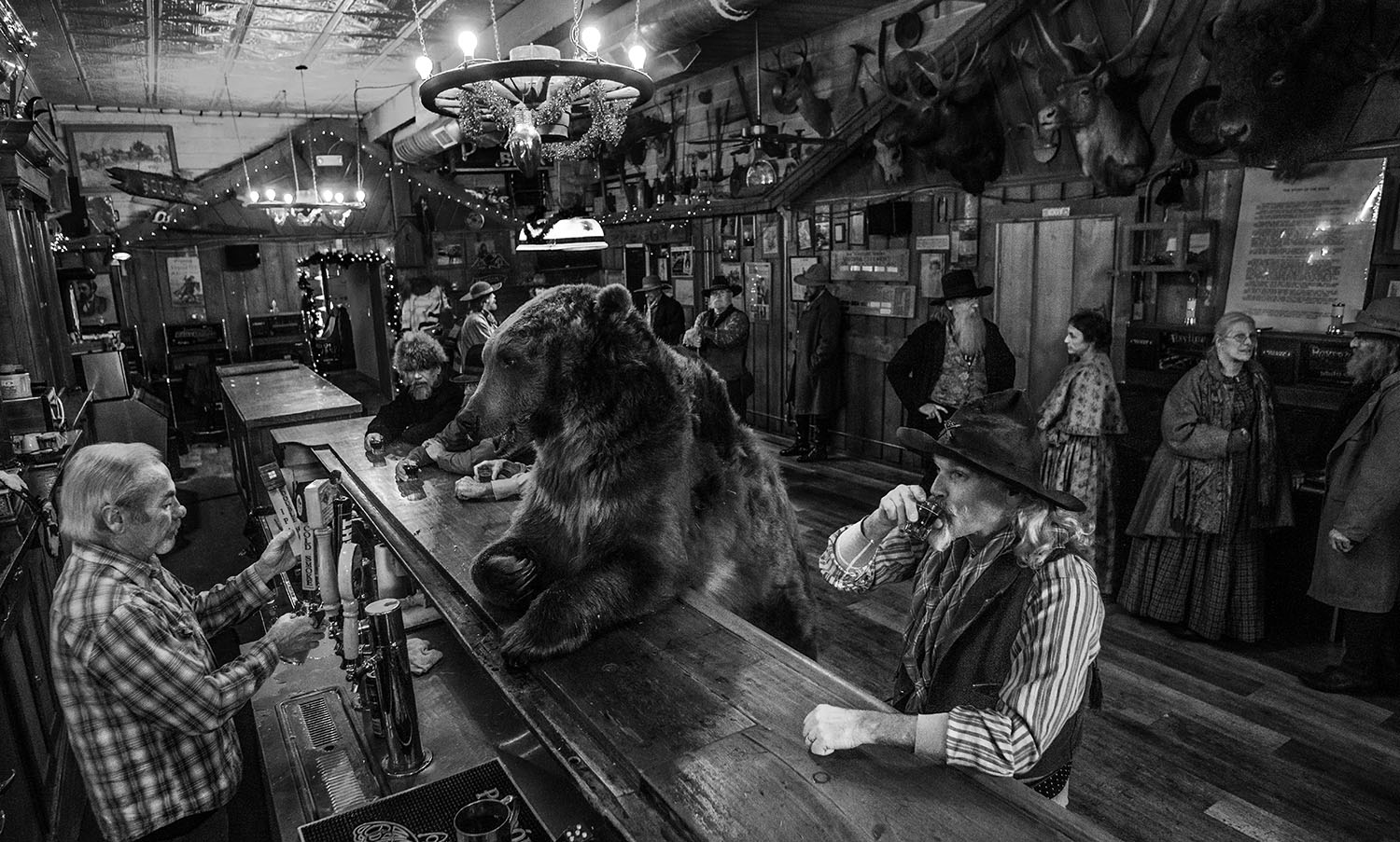 A Bear Walks Into a Bar by David Yarrow