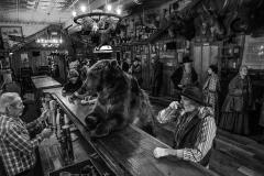 A Bear Walks Into a Bar by David Yarrow