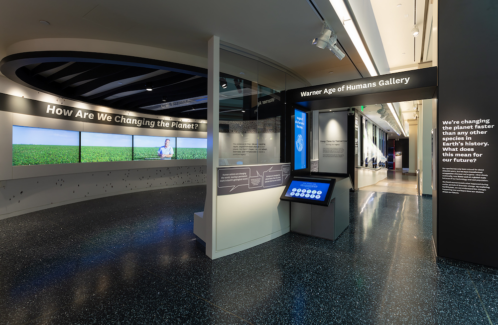 Photo documentation of The David H. Koch Hall of Fossils –– Deep Time exhibit at the Smithsonian Institution National Museum of Natural History in Washington, DC in May 2019.Exhibit opened to the public on June 8, 2019.
