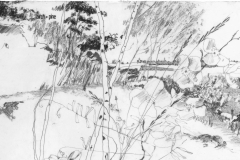 P 120b_Drawing for Landscape Architecture