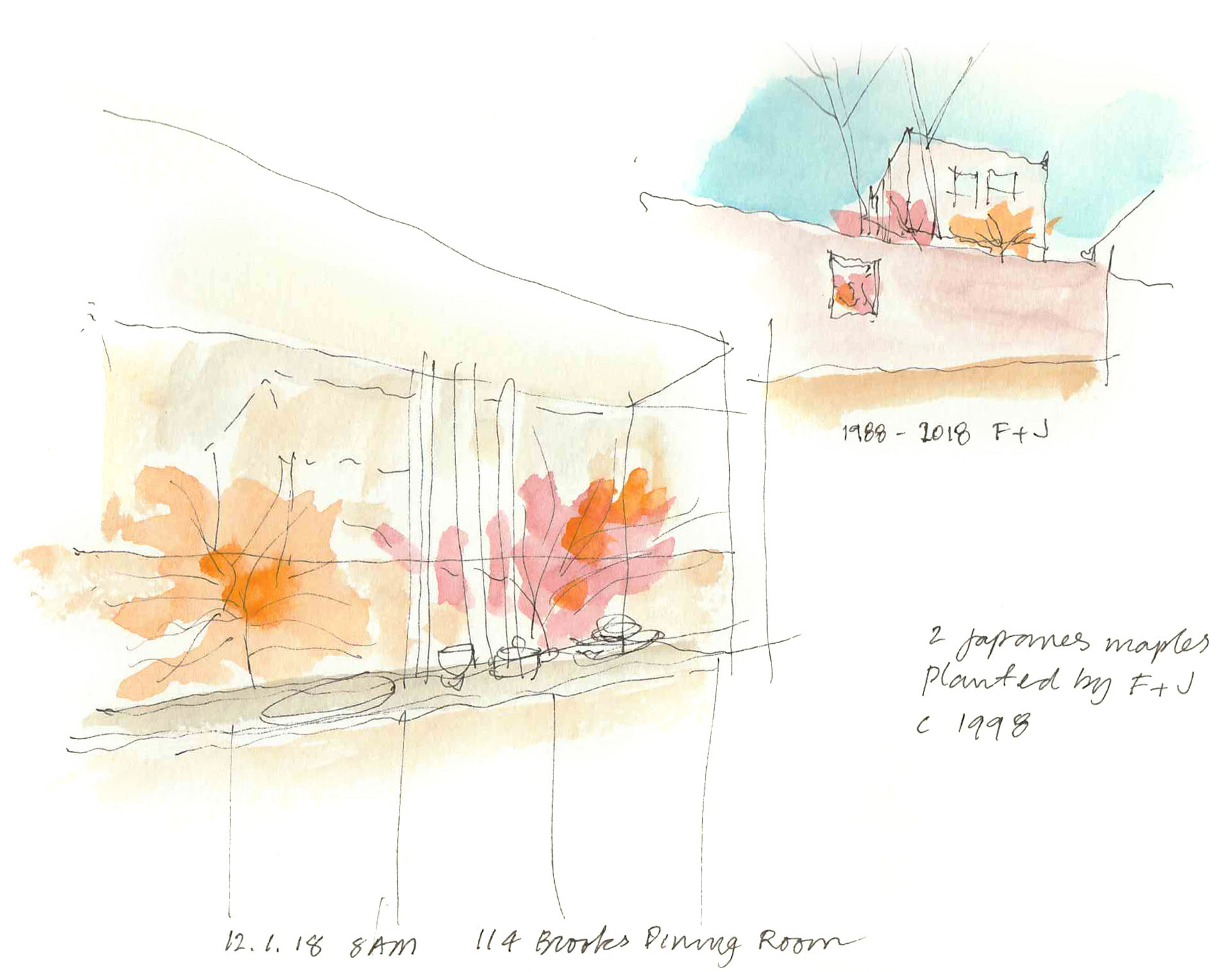 Garden Diary Sketches, by Frank Harmon
