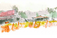 Rural Studio, by Frank Harmon