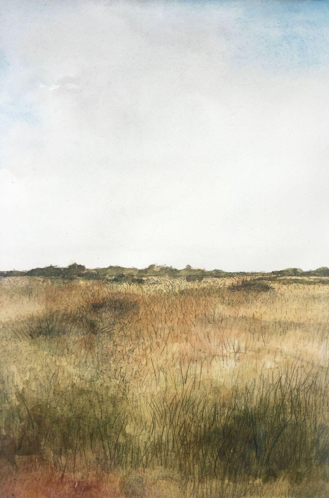 Everglades, Jacob Brillhart