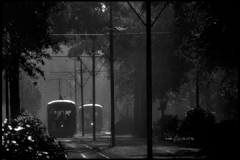 St. Charles Ave. Streetcar, (c) Louis Sahuc
