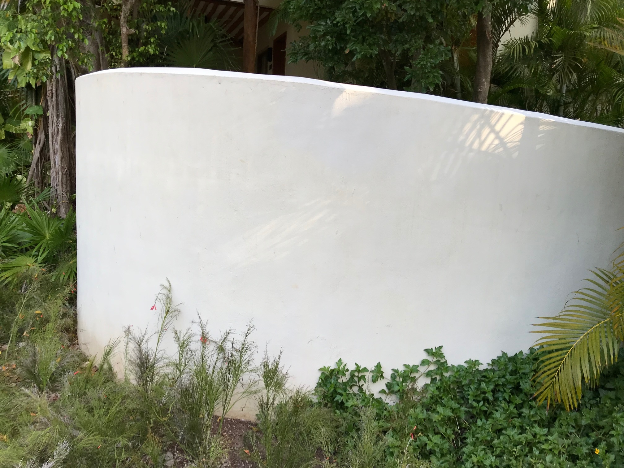 Smooth, curved stucco wall, Mahekal Resort, Mexico