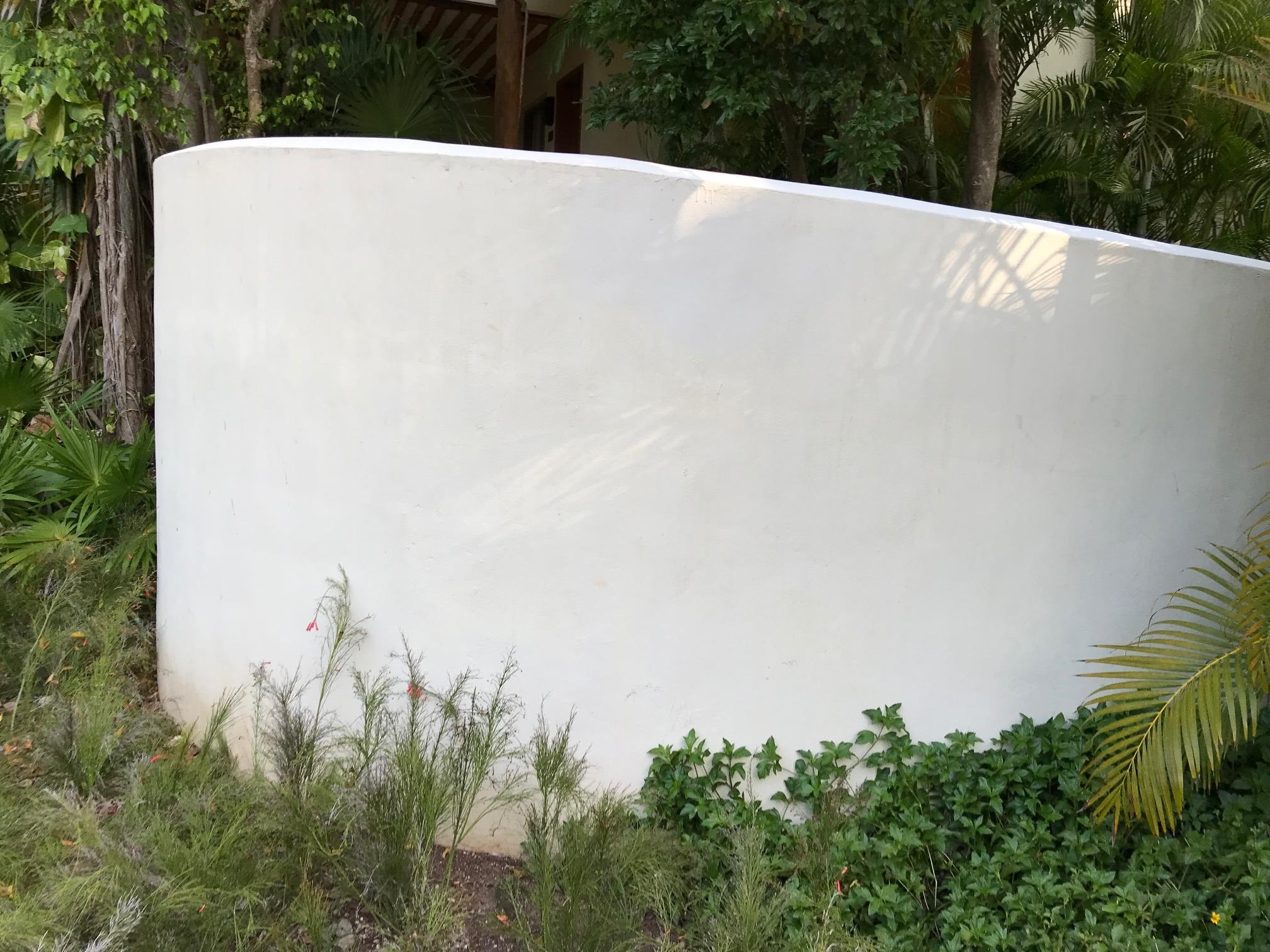 Smooth, curved stucco wall, Mahekal Resort, Mexico