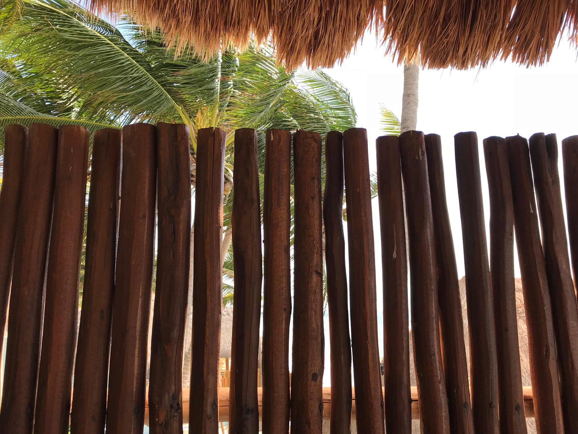 Polished Mesquite Partition, Mahekal Resort, Mexico