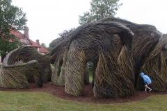 HIGHFIELD - A Passing Fancy: Patrick Dougherty