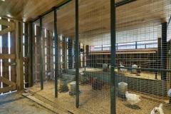 Barn Interior,  Lamplighter School, Blackwell Architects
