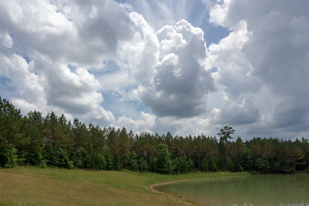 Splinter-Creek-Day-One-3