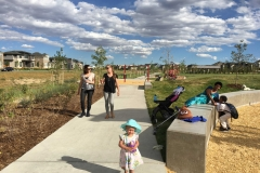 """""""Play Pods"""" accentuate the arcing walkway that divides the nativedrainage wayand the large turf field through Cottonwood Gallery."""