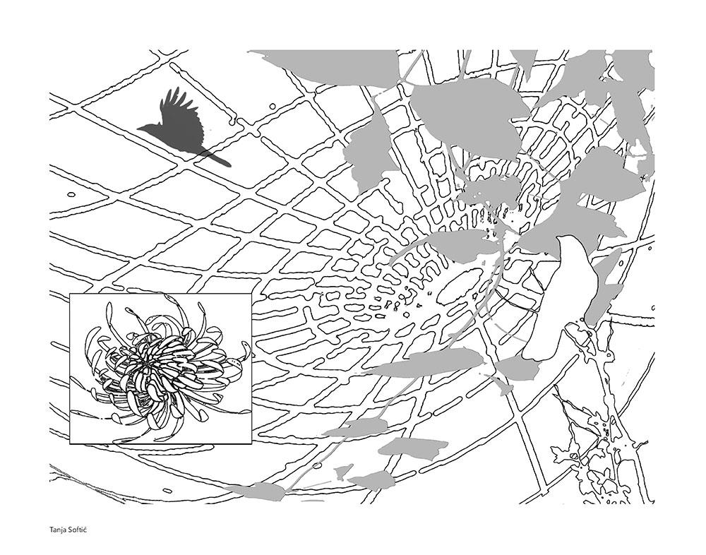 artists-coloring-book-tanja-softic-1
