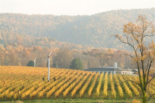 vineyardwinery
