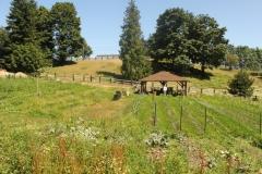 amaranth-urban-farm