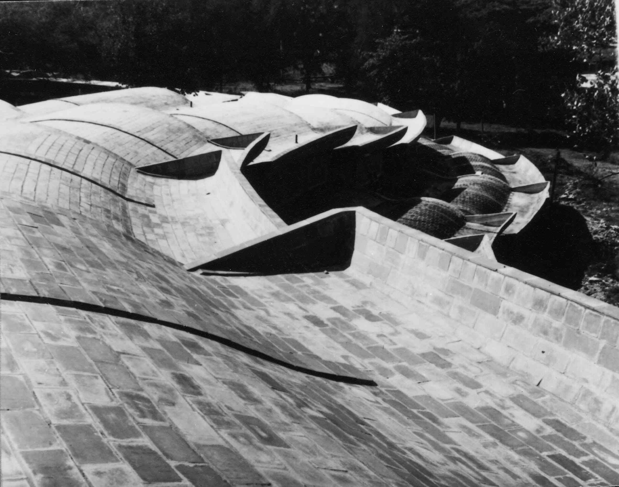 07-school-of-music-roofs-micelena-low-res