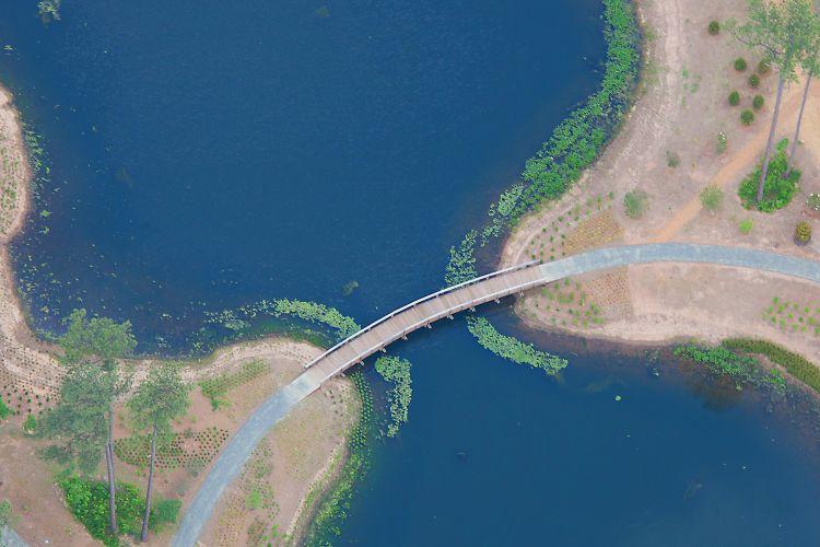 Areial View: Bridge