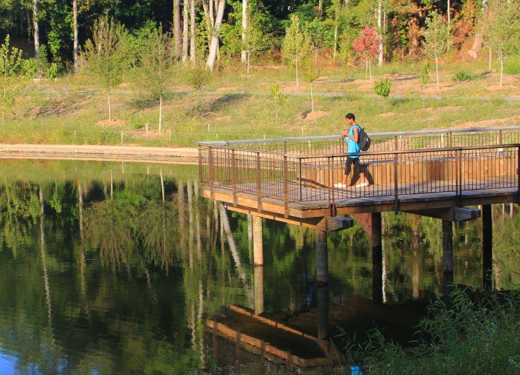 Duke Pond
