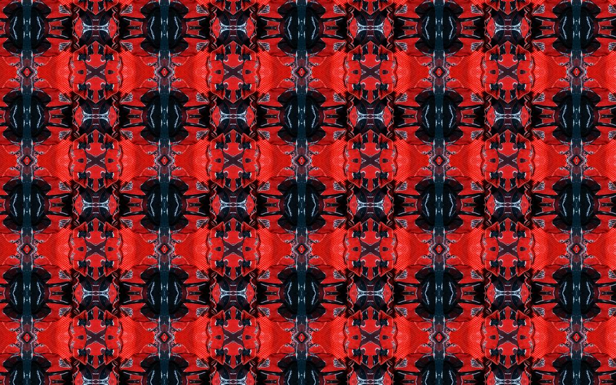 torredor-glamour-red