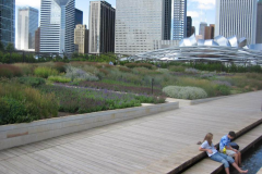 ggflurie-garden-millennium-park-chicago-il-credit-gustafson-guthrie-nichol