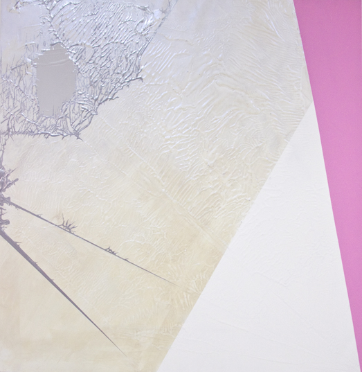 10_davidow_diagram-26_parrot-origami_sarah-morris_2010_48inby48in