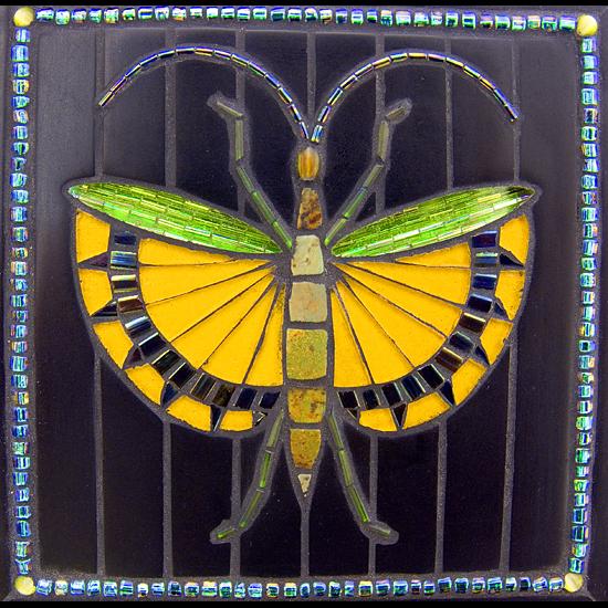 yellowbfly-square-ok