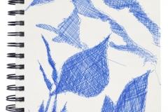 r_130219_mount_rainier_jo_sketch_webview