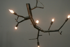 newgrowth-isngle-wire-curved-chandelier