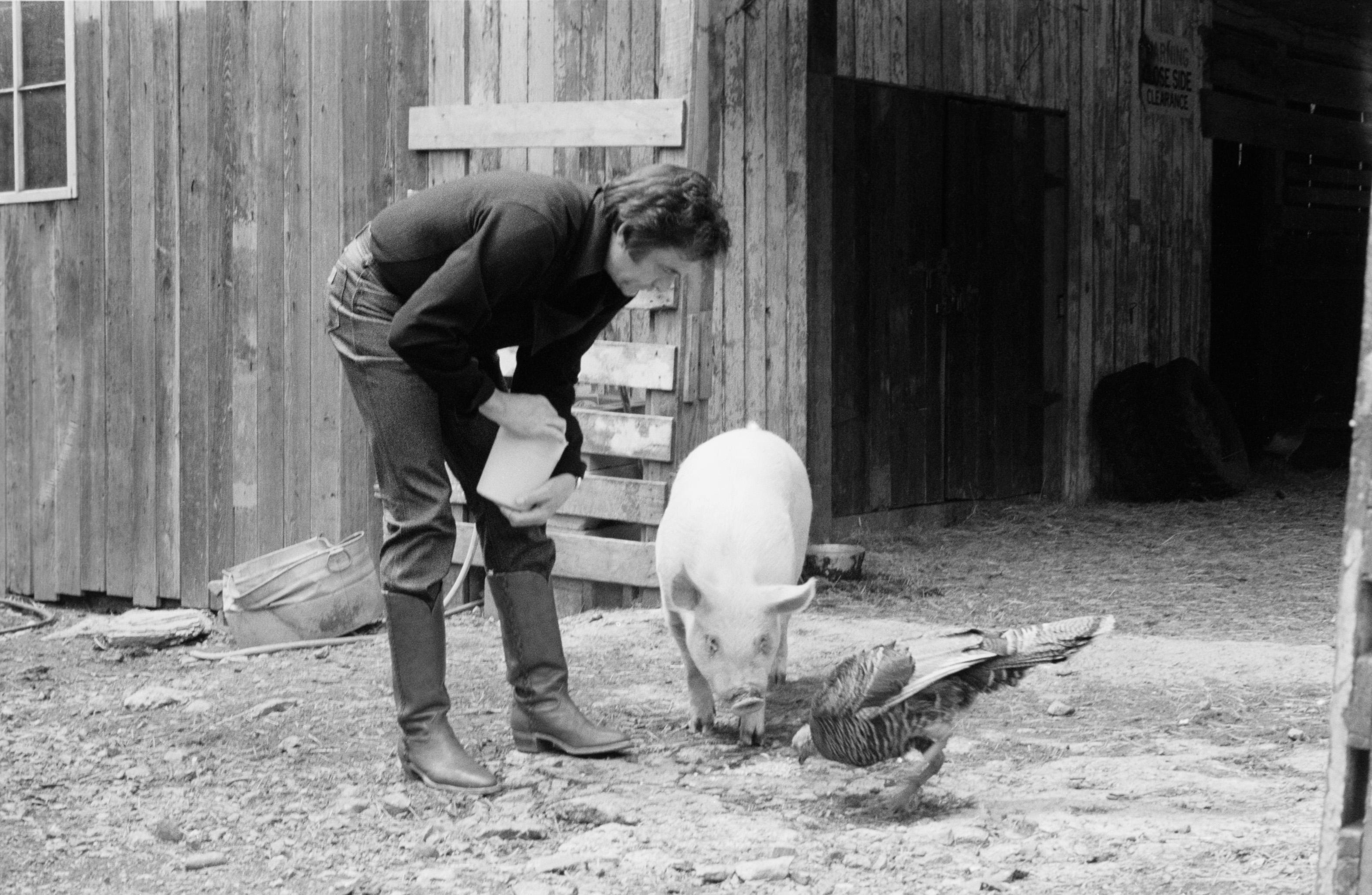 Stuart: J. R. Cash and Snorkle the Pig, 1982