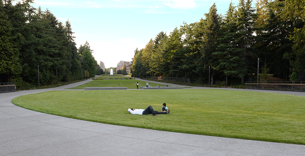 ggn-rainier-vista-grass-curve