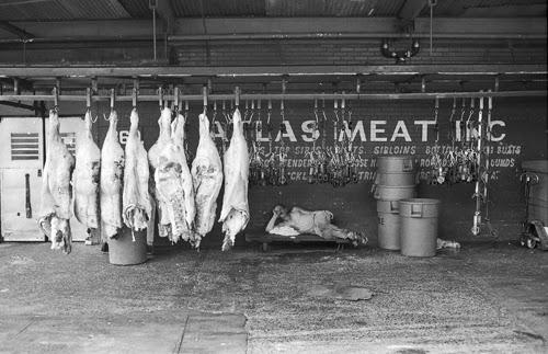Atlas+meatblog