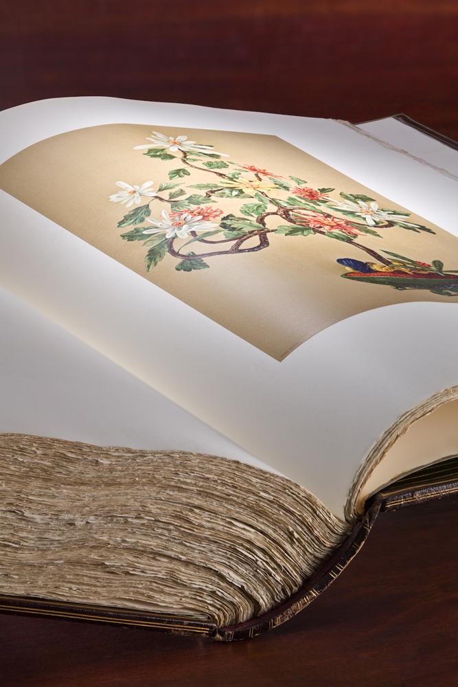 03a_jade-book-courtesy-peabody-essex-museum