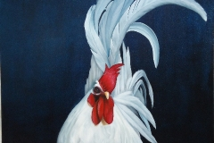 Rooster Oil Painting