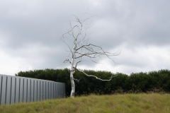 North Carolina Museum of Art West Building; Askew by Roxy Paine